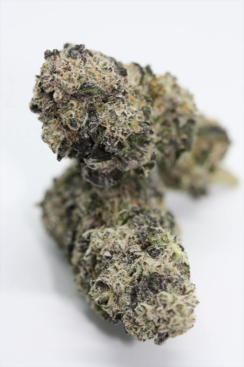Cannabis Caveman is Maine's top choice for craft cannabis, providing small batch harvests with carefully sourced genetics that are hand trimmed and jar cured.